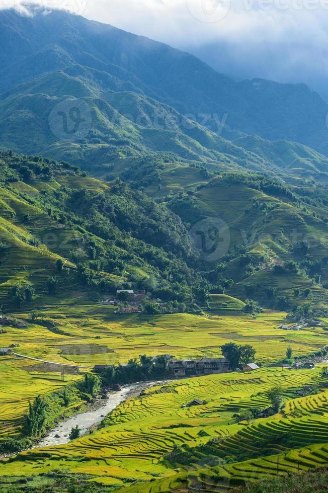 Reisfelder auf der Terrasse bei Sapa, Lao Cai, Vietnam foto