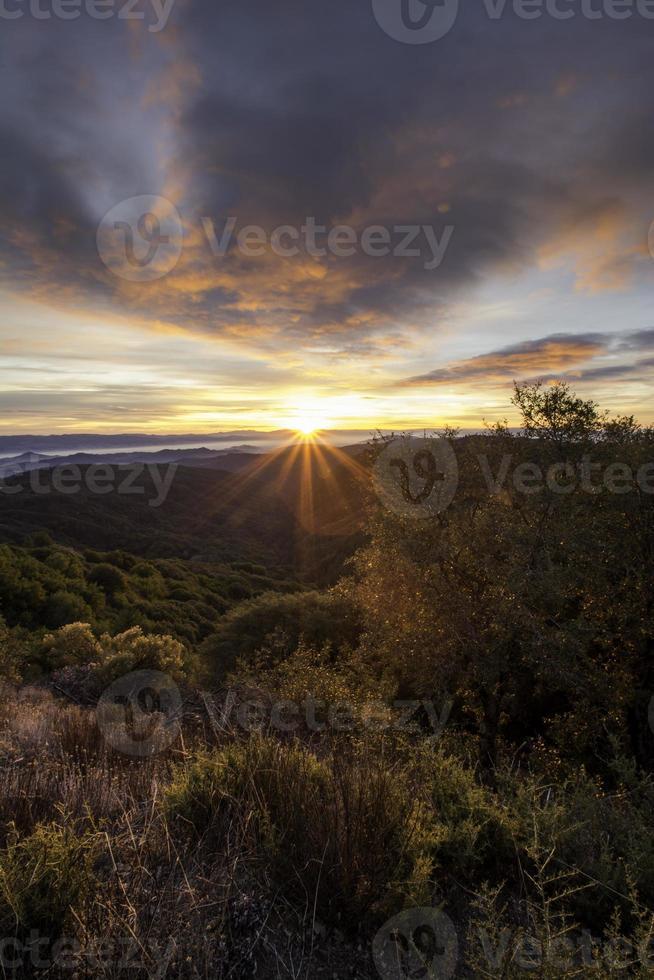 Licht des Morgens foto