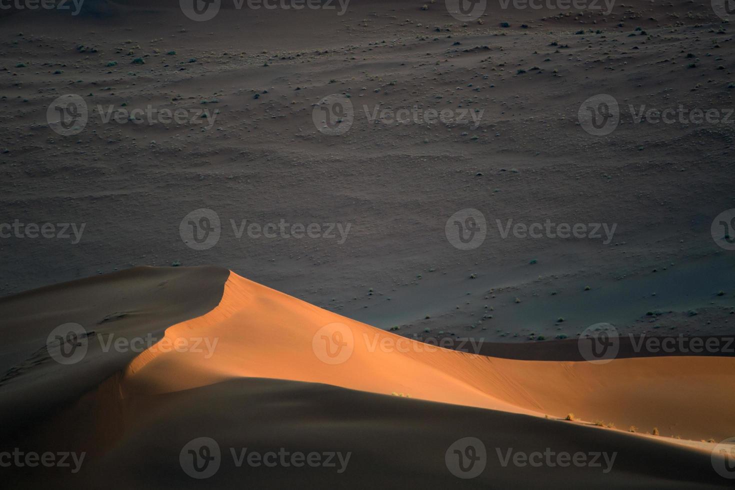 Sanddüne foto