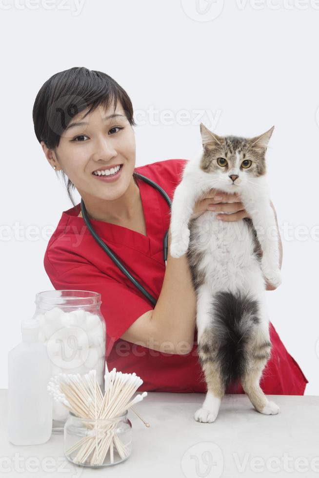 Tierärztin bei der Arbeit foto