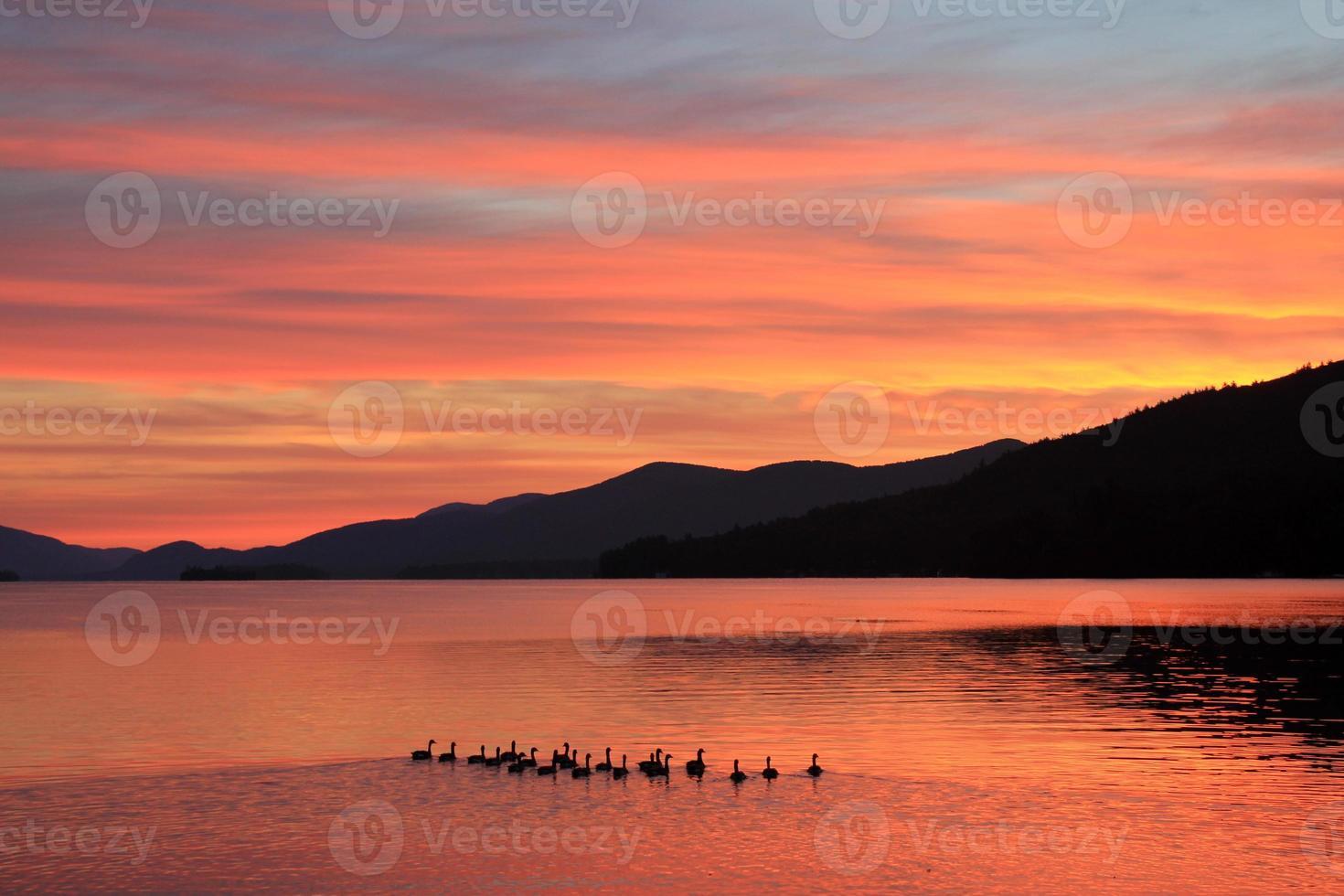 Entenfamilie schwimmt morgens bei Sonnenaufgang auf dem See foto