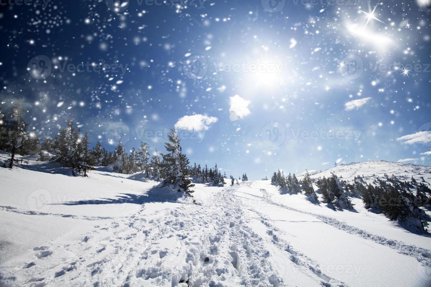schneebedeckter Weg auf dem Hügel foto