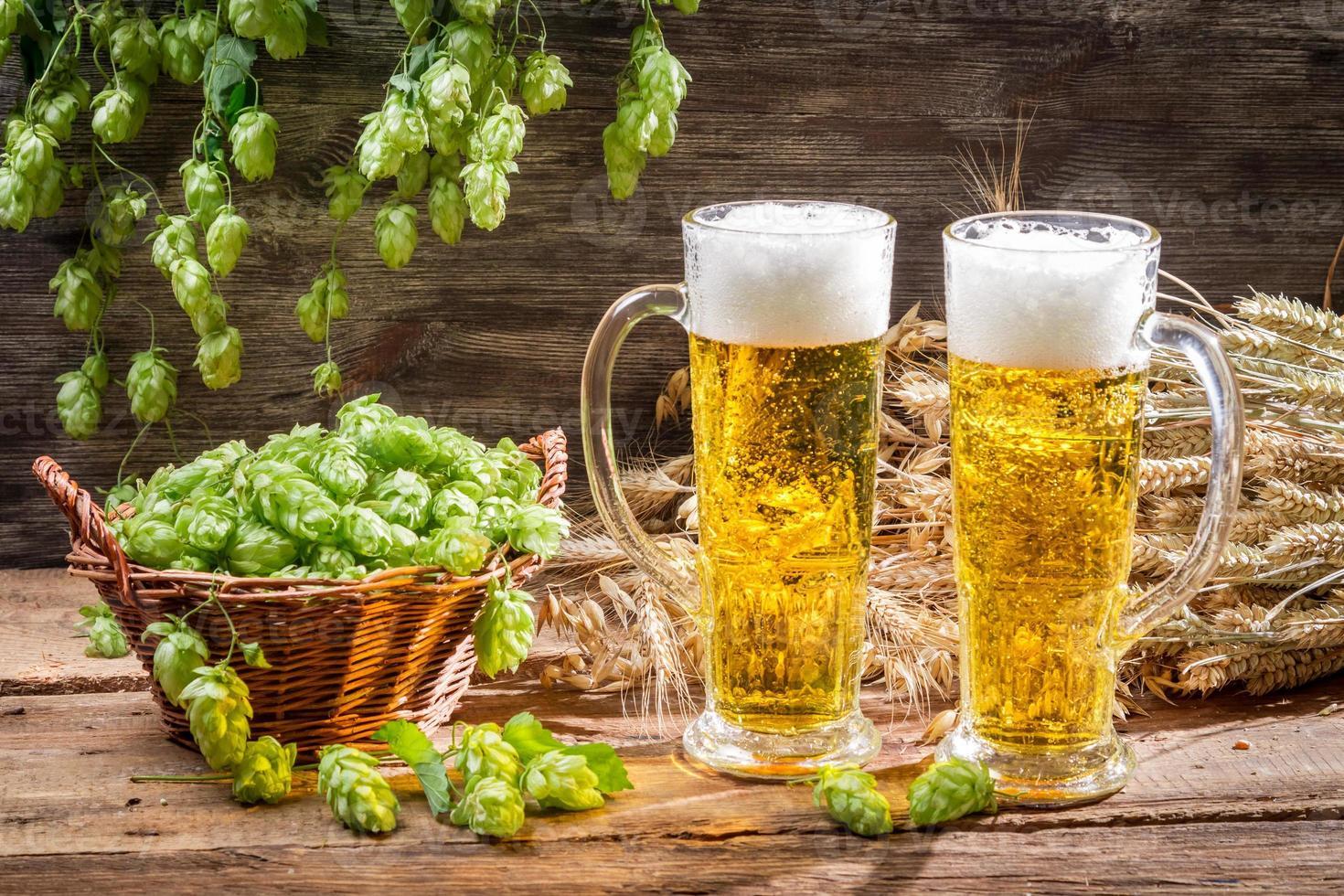 kaltes Bier, umgeben von Hopfenzapfen foto