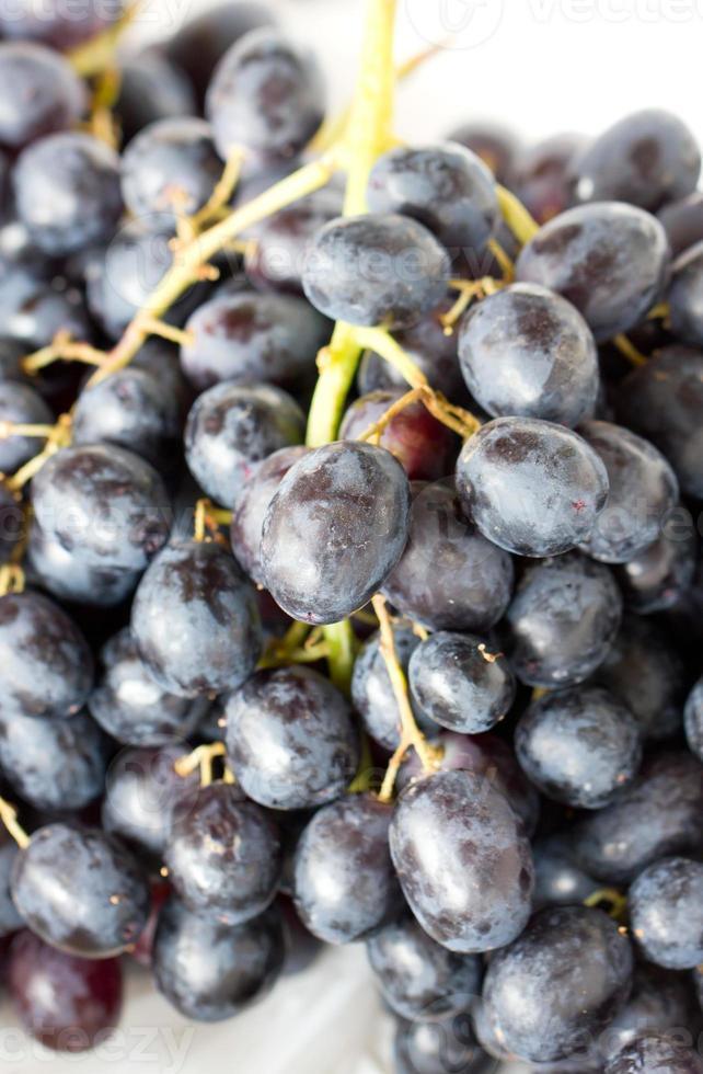 Nahaufnahme von Traubenfrüchten. foto