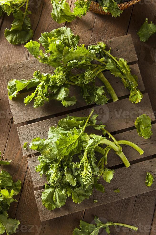 Bio roher grüner Brokkoli Rabe Rapini foto