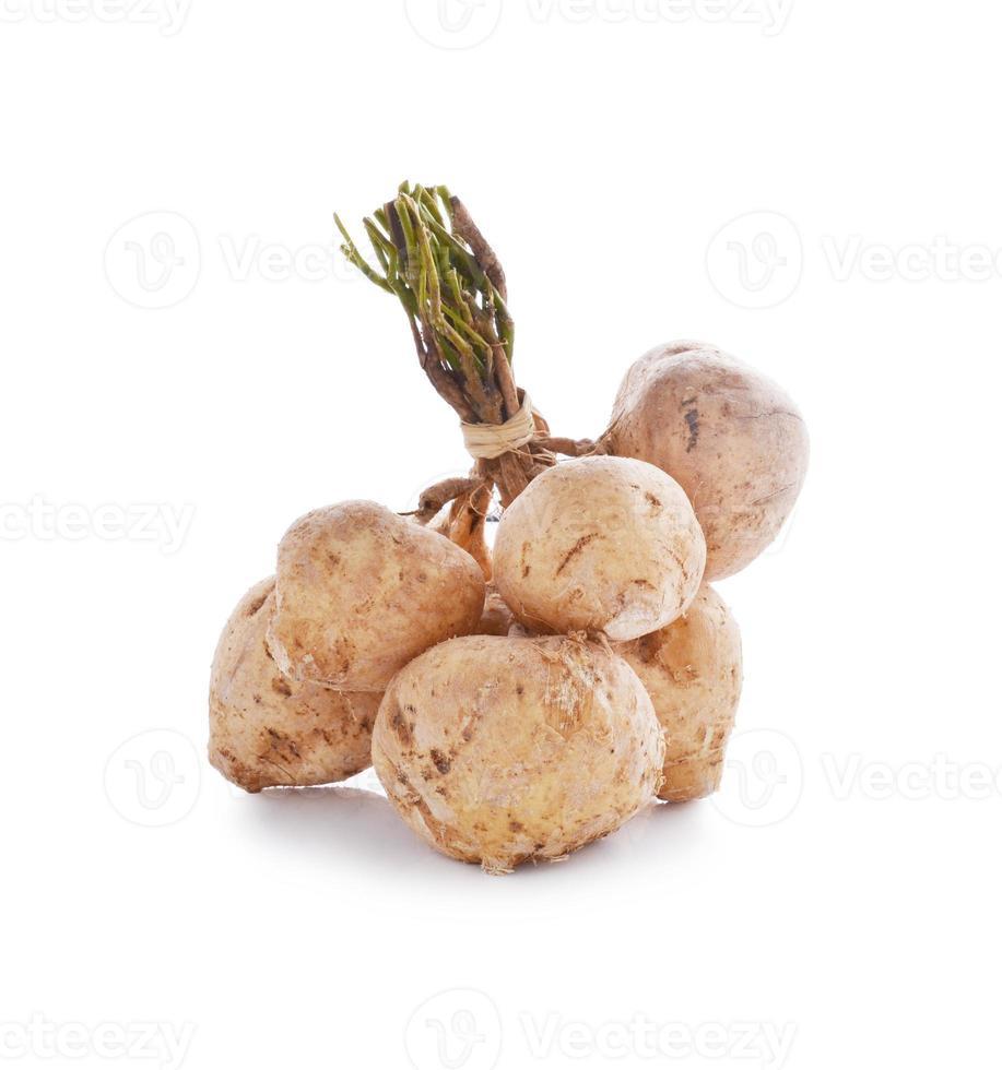 Jicamas auf Weiß foto