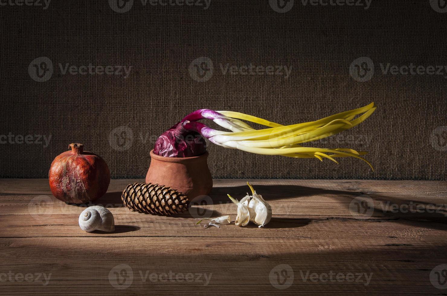 gekeimte Zwiebeln und getrockneter Granatapfel foto