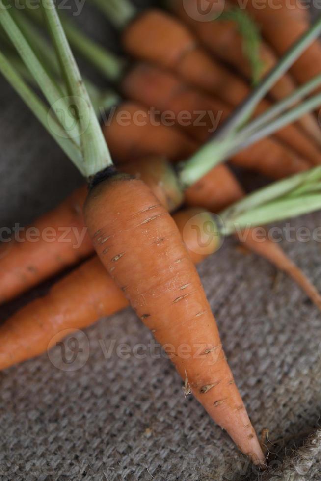 Baby Karotten foto