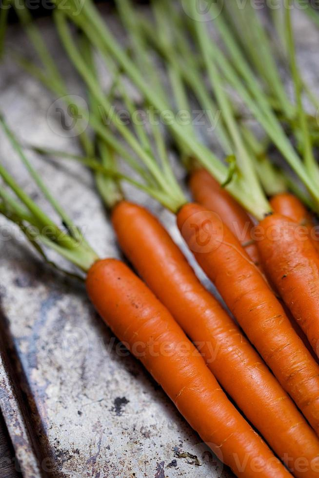 Nahaufnahme Bündel roher Karotten mit Stielen auf Metall foto