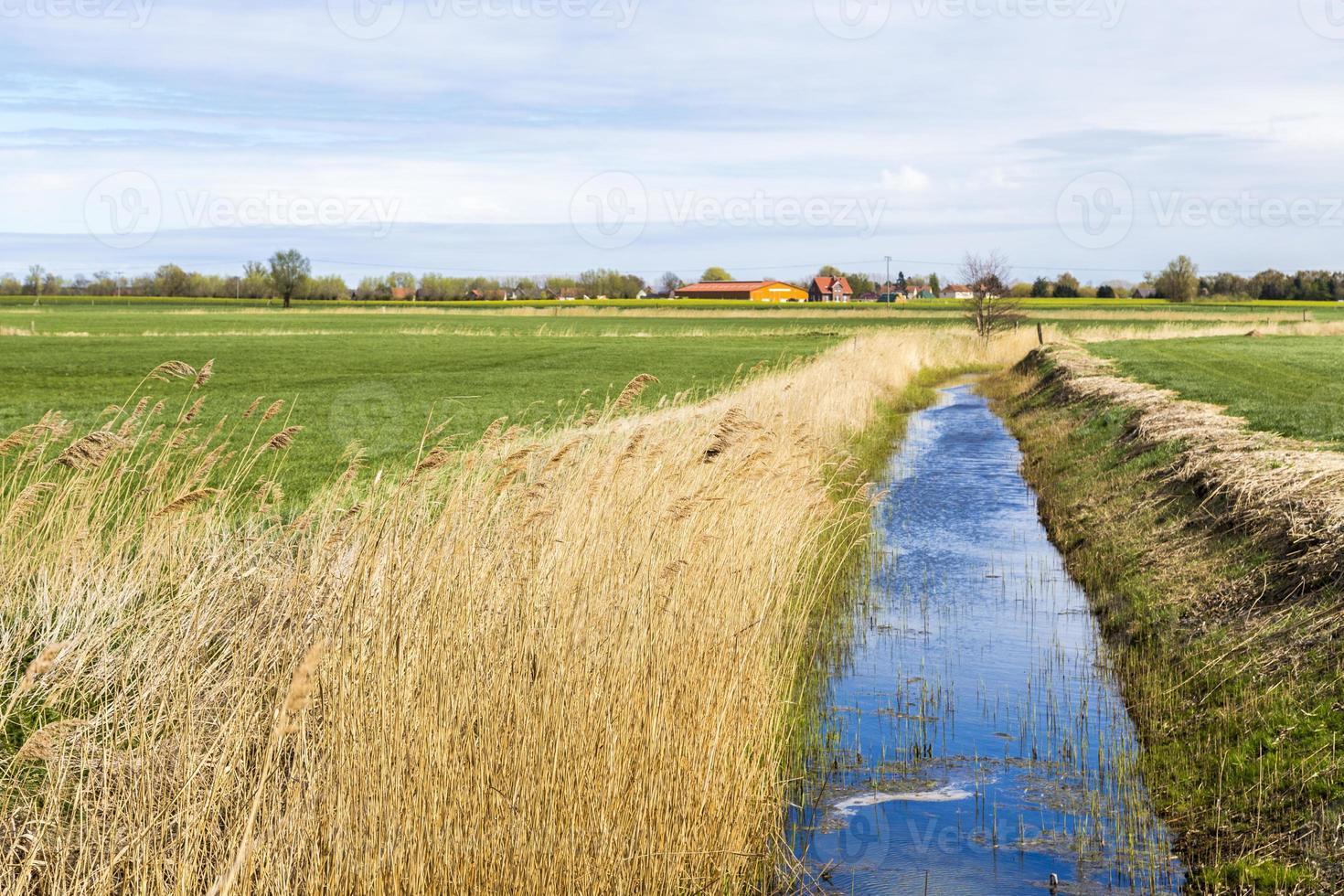 Achterwasser in Gebrauch an der Ostsee foto