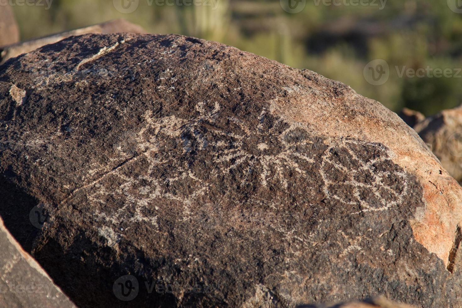 Petroglyphe foto