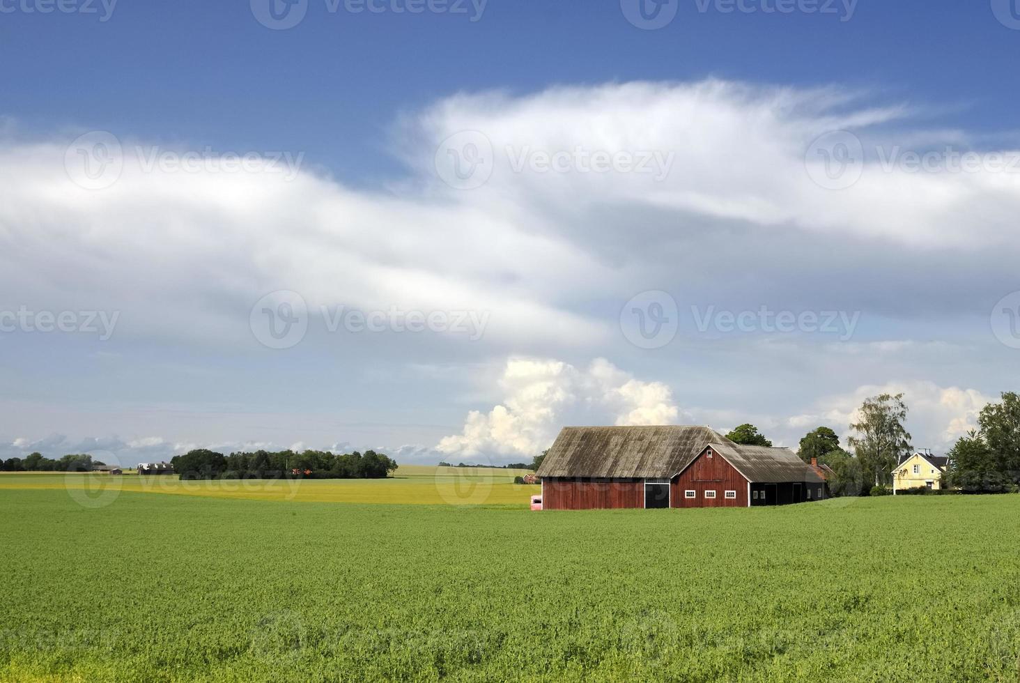 schwedische Landschaft foto