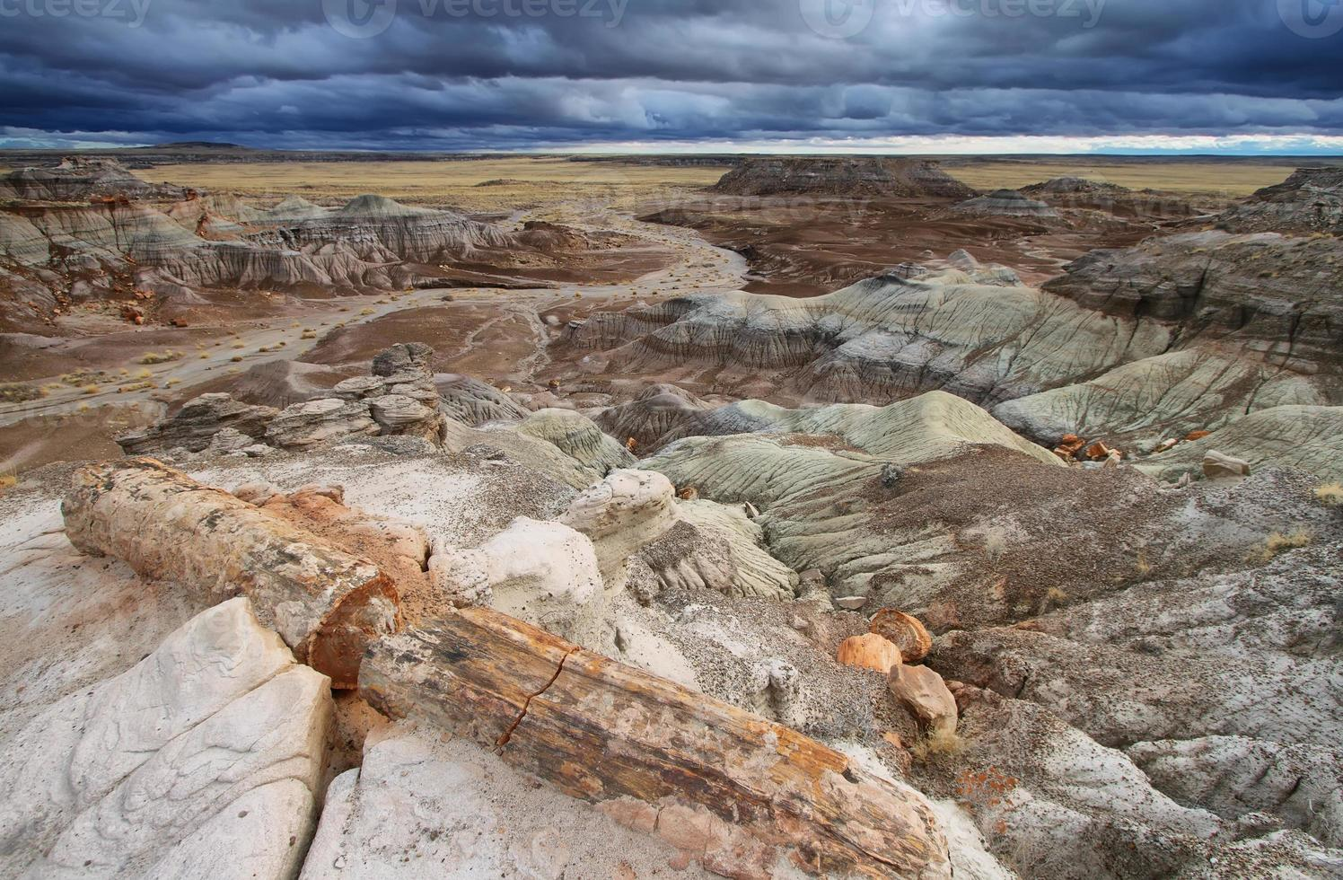 blaue Mesa, versteinerter Waldnationalpark, foto