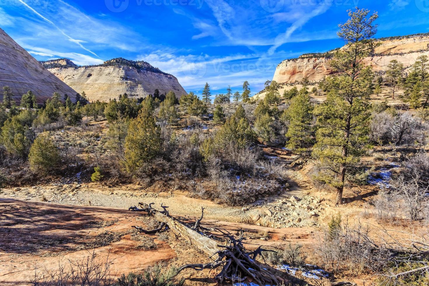 Schachbrett Mesa im Zion National Park foto