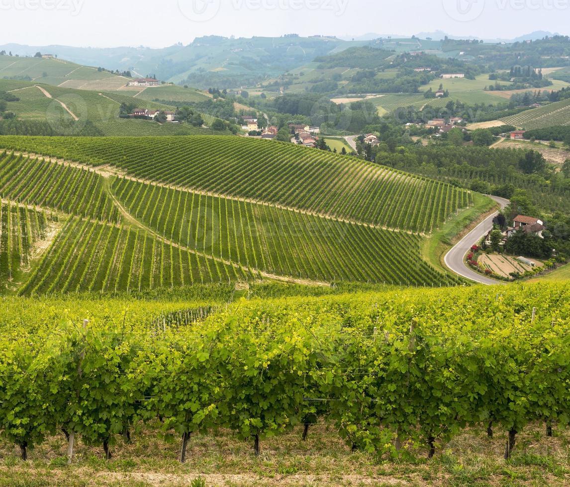 Landschaft in Langhe (Piemont) foto