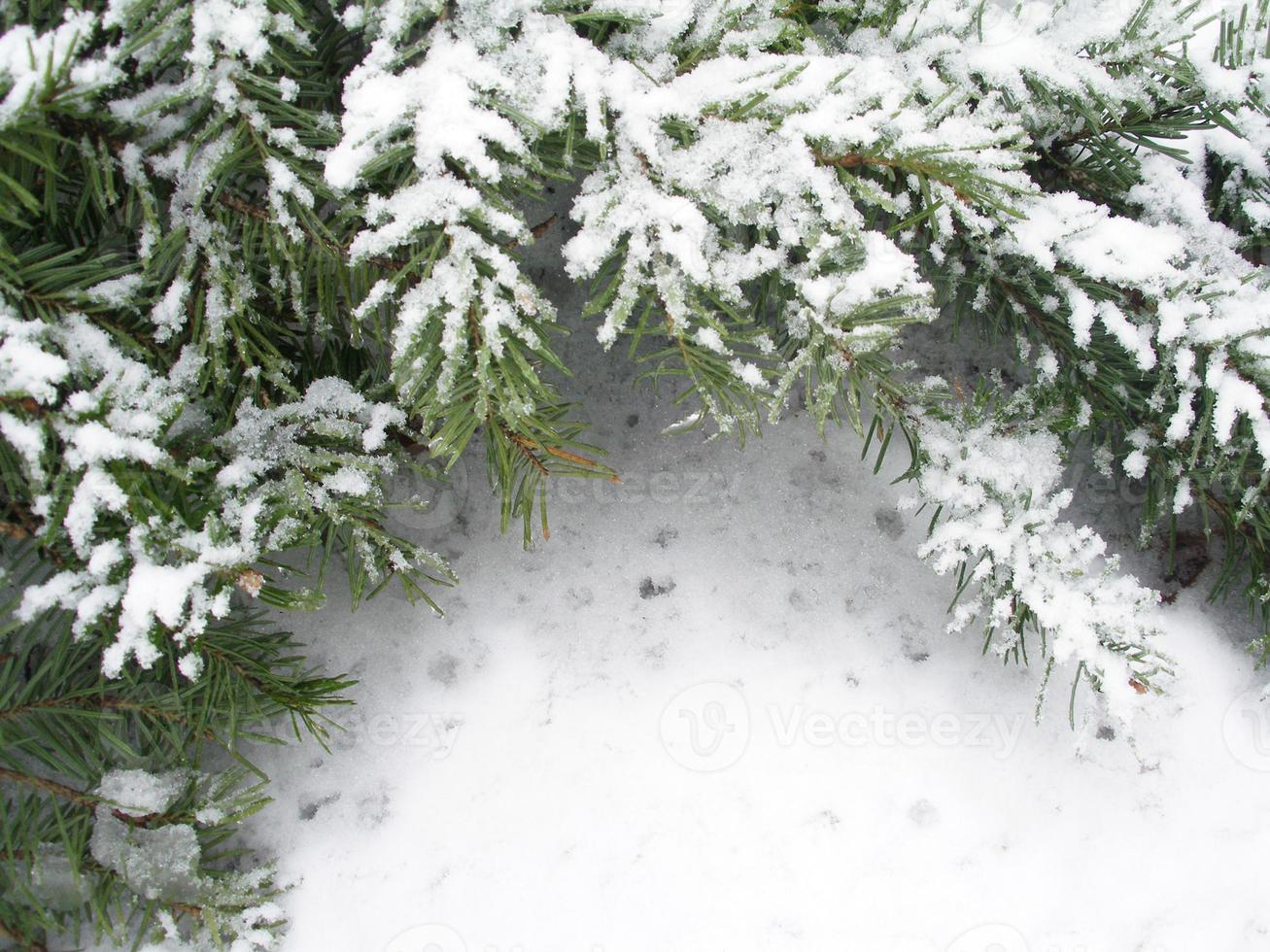 Winterhintergrund foto