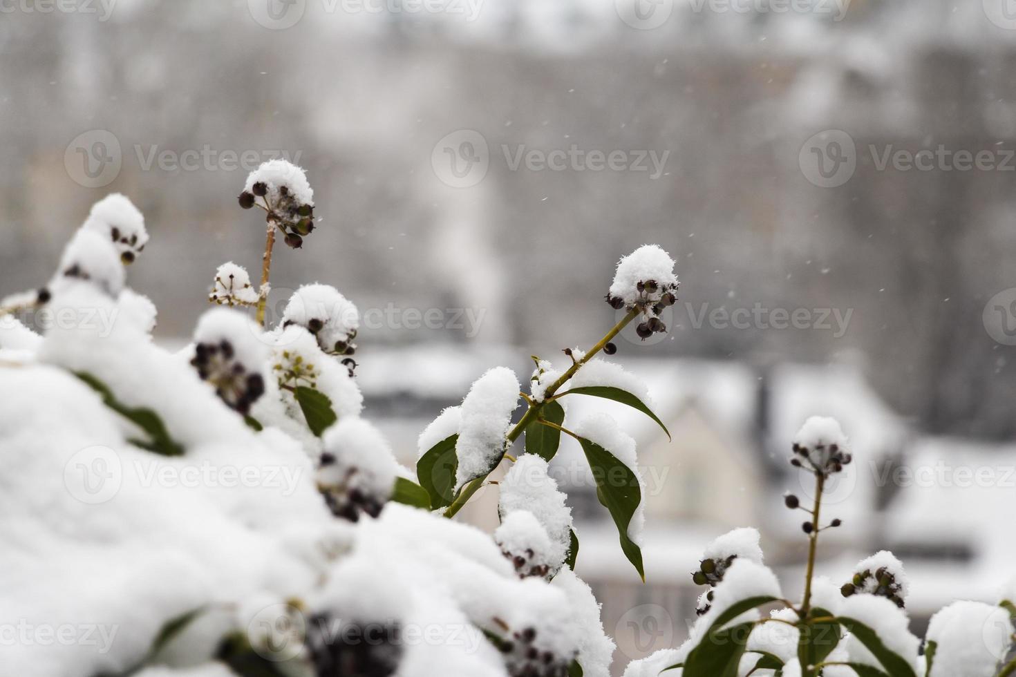 Winter Luxemburg, Europa foto
