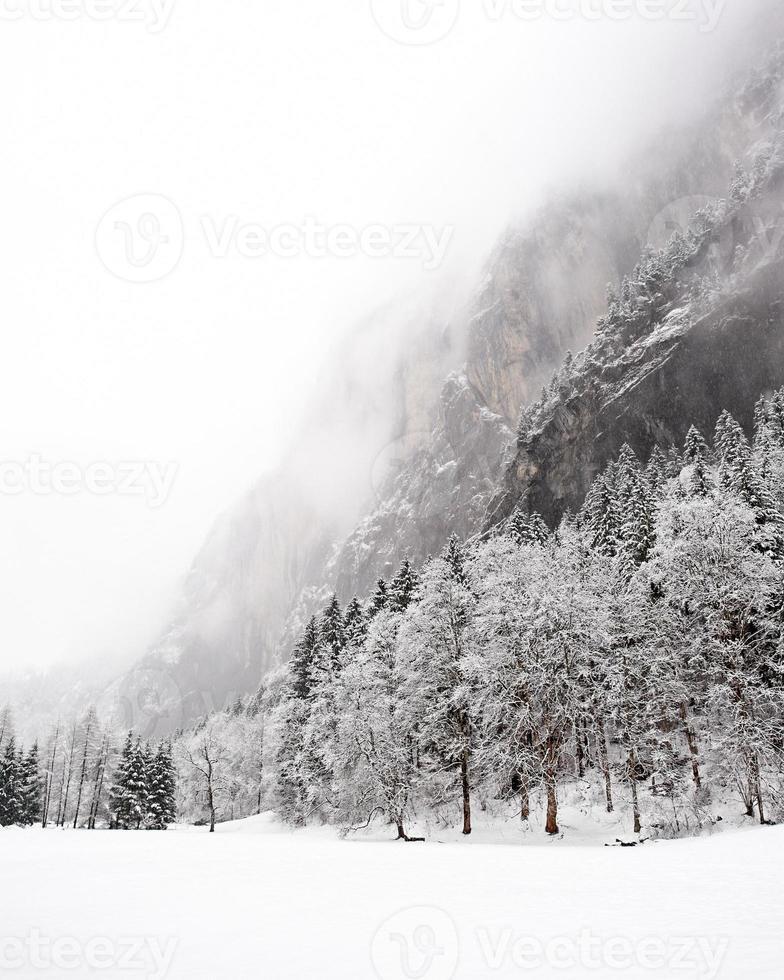 truemmelbachfälle (lauterbrunnen, schweiz) - winter 2009 foto