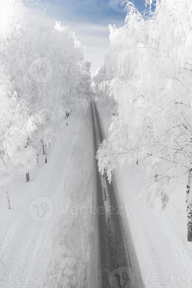 Winterstraße mit schneebedeckten Bäumen foto