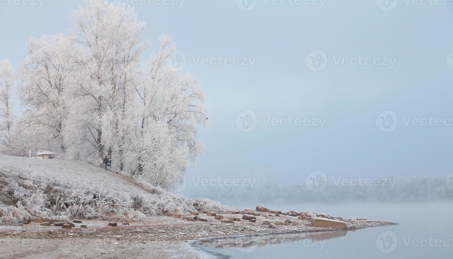 Morgennebel im Winter foto