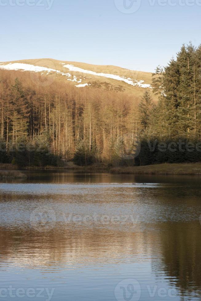 walisischer See foto