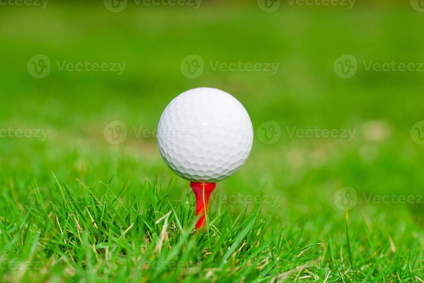 Golfball auf Abschlag. grünes Gras. foto