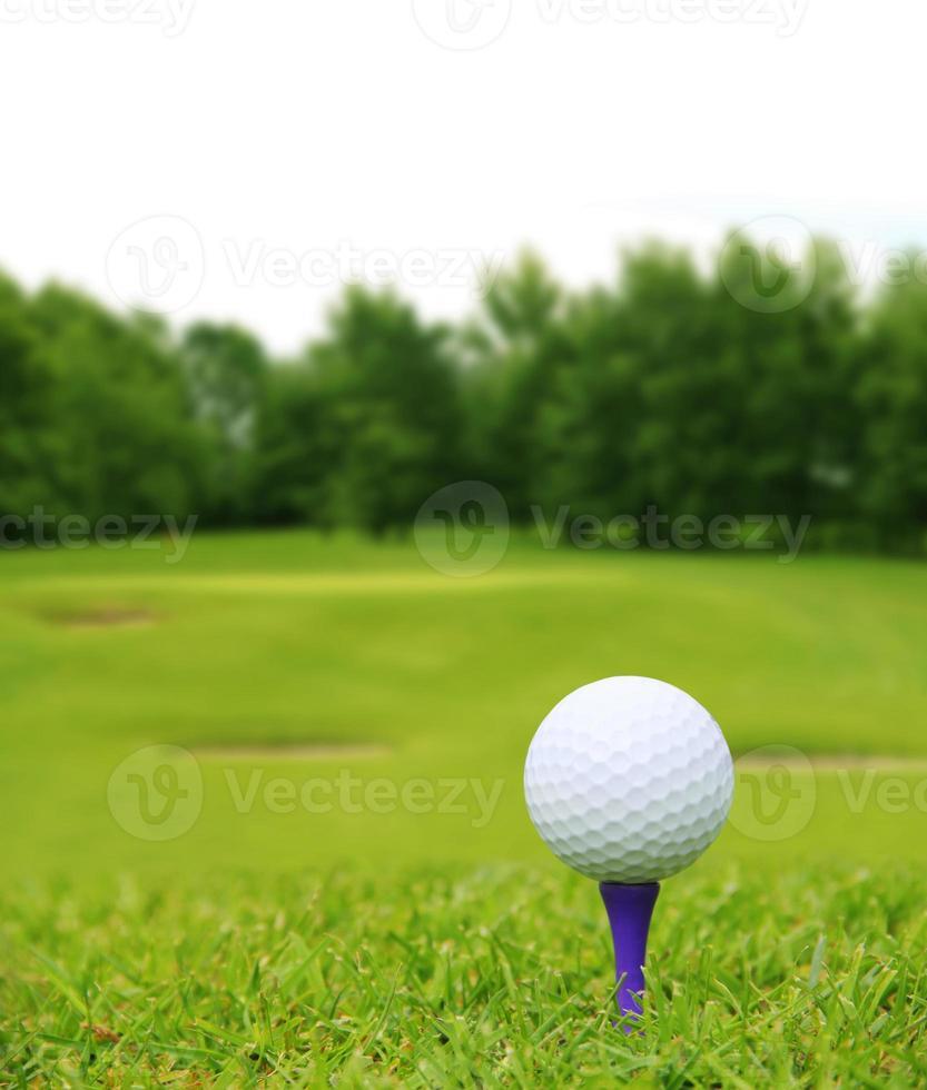 Golfball auf dem Platz foto