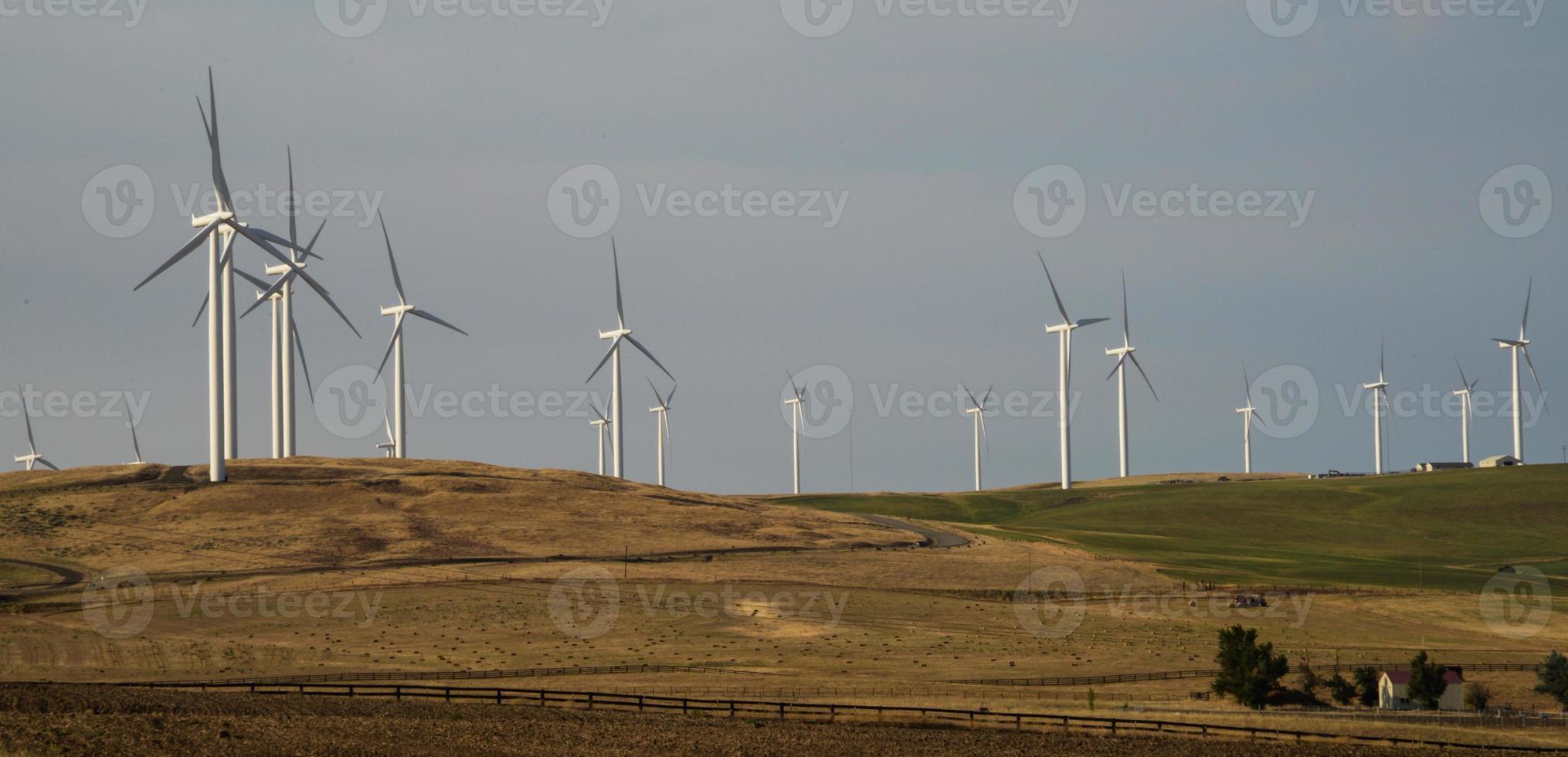 Turbinen im Windpark foto