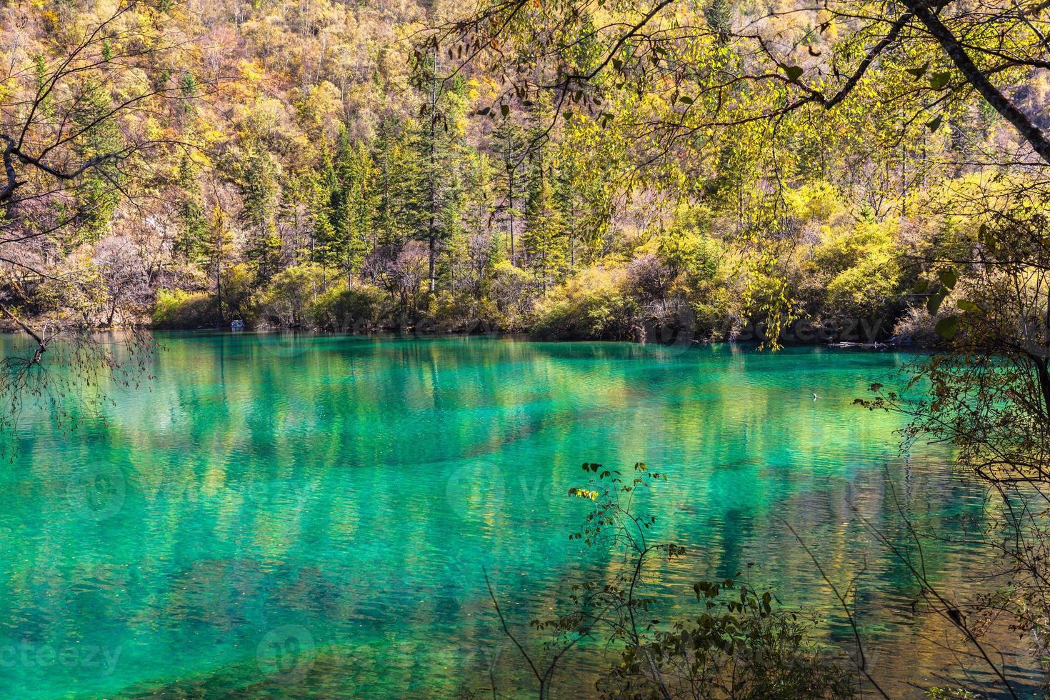 schöner Teich im Jiuzhaigou Nationalpark foto