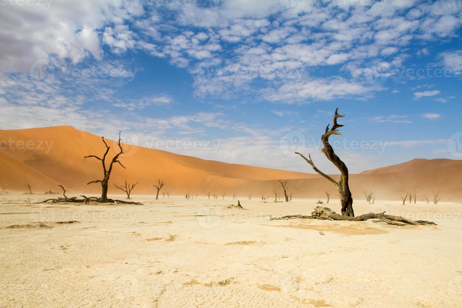 Sossusvlei Wüste, Namibia foto