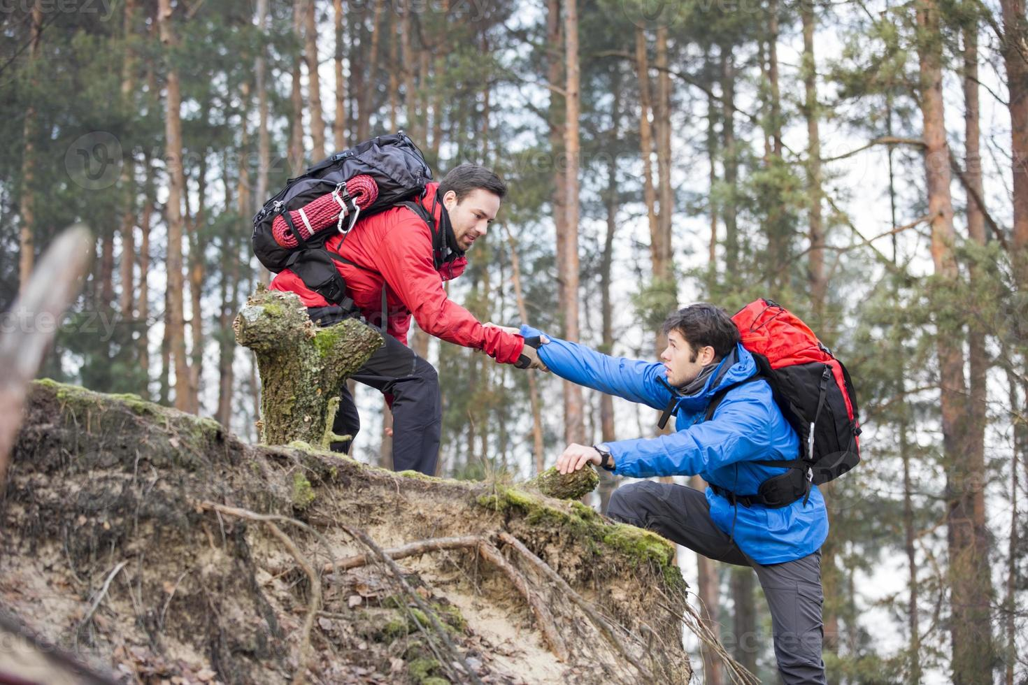 Wandern im Wald foto