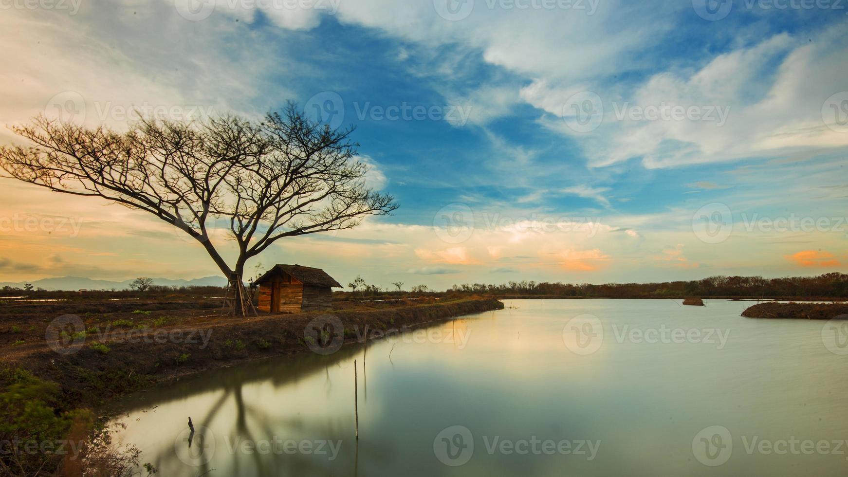 schöne einsame Bäume und kleines Haus foto