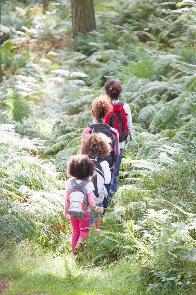 Familiengruppe gemeinsam im Wald wandern foto