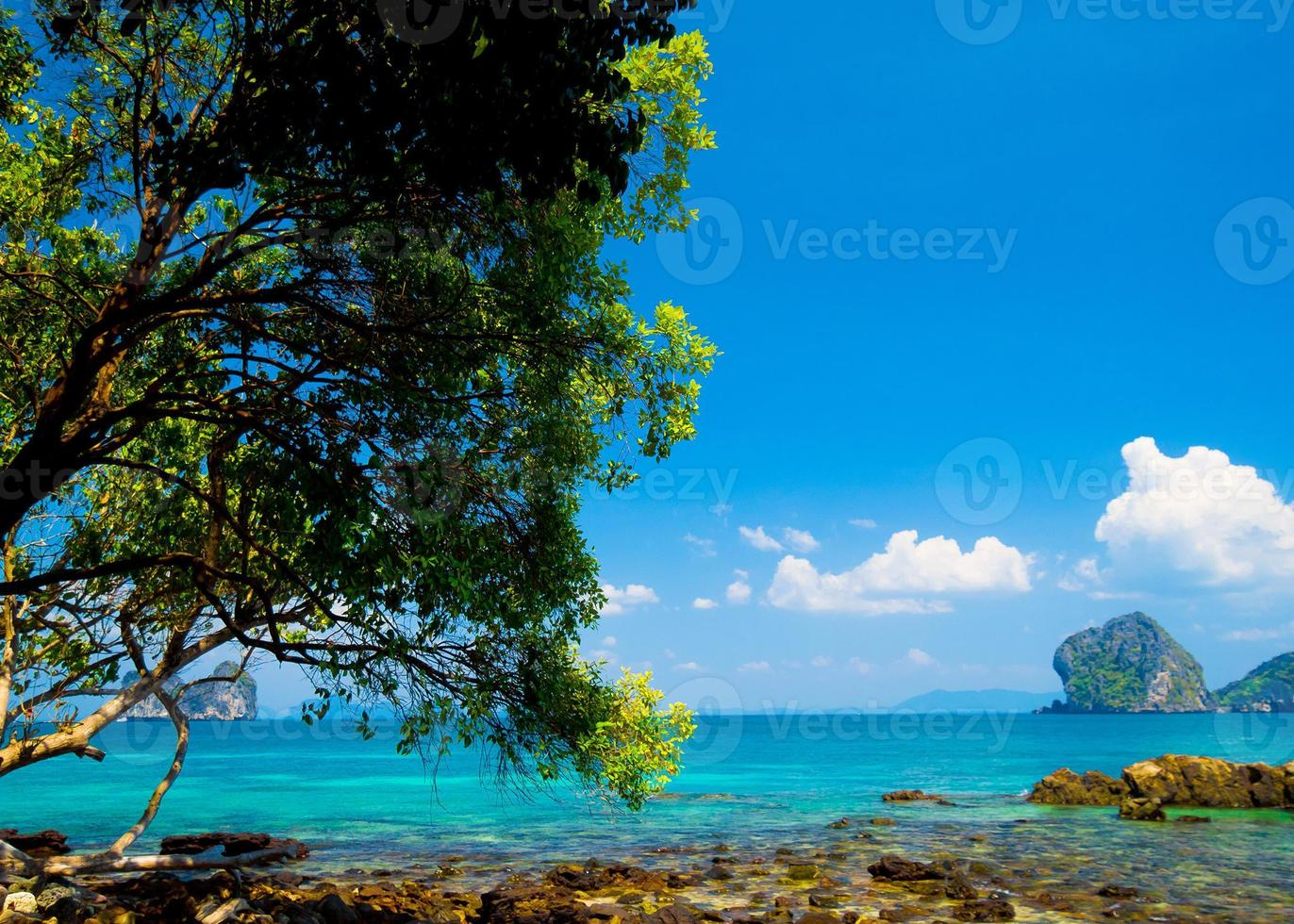 Wasserlandschaft foto