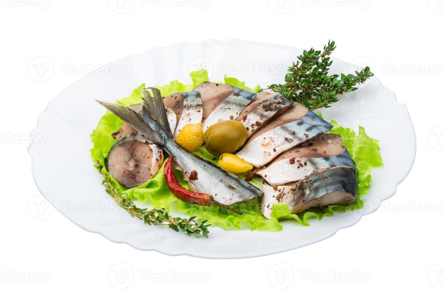 Makrelen foto