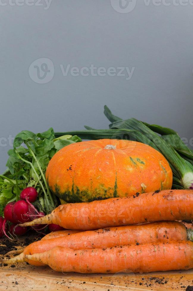 Bio frisches Gemüse: Kürbiskürbis, Karotten, Frühlingszwiebeln, rad foto