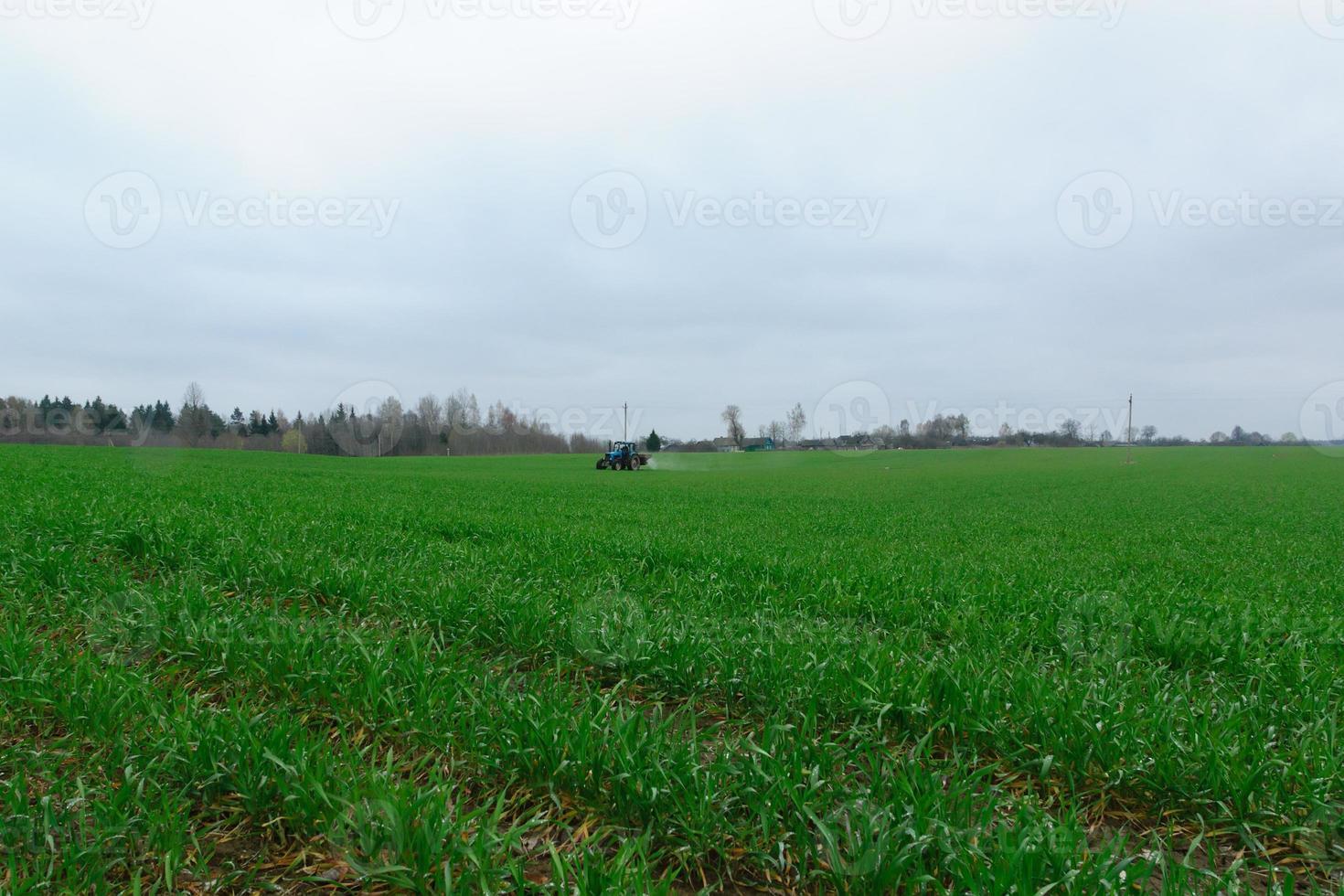Traktor auf dem Feld foto