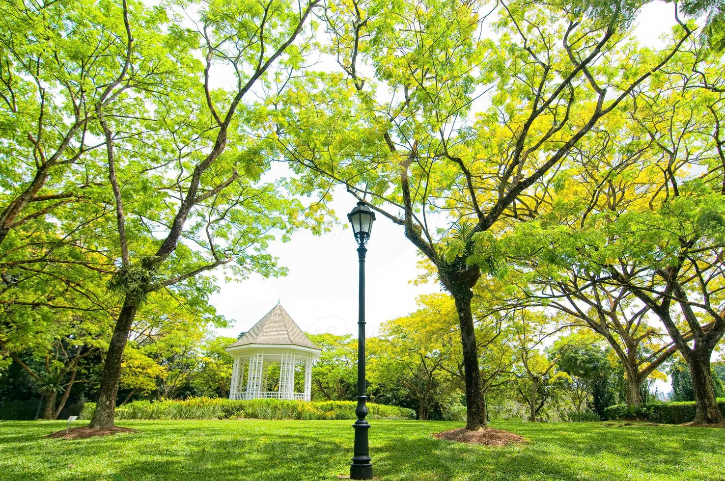 Botanischer Garten Singapur, Singapur foto