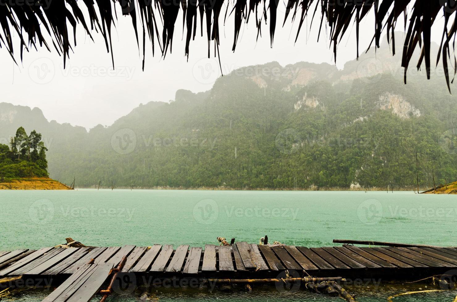 Natur im Regen .. foto