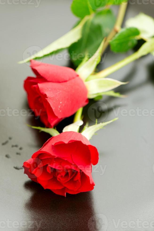 zwei rote Rosen auf Teller foto