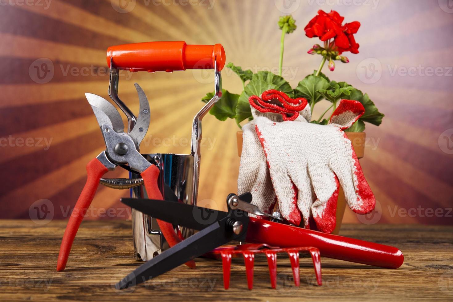 Gießkanne und Gartenhandschuhe foto