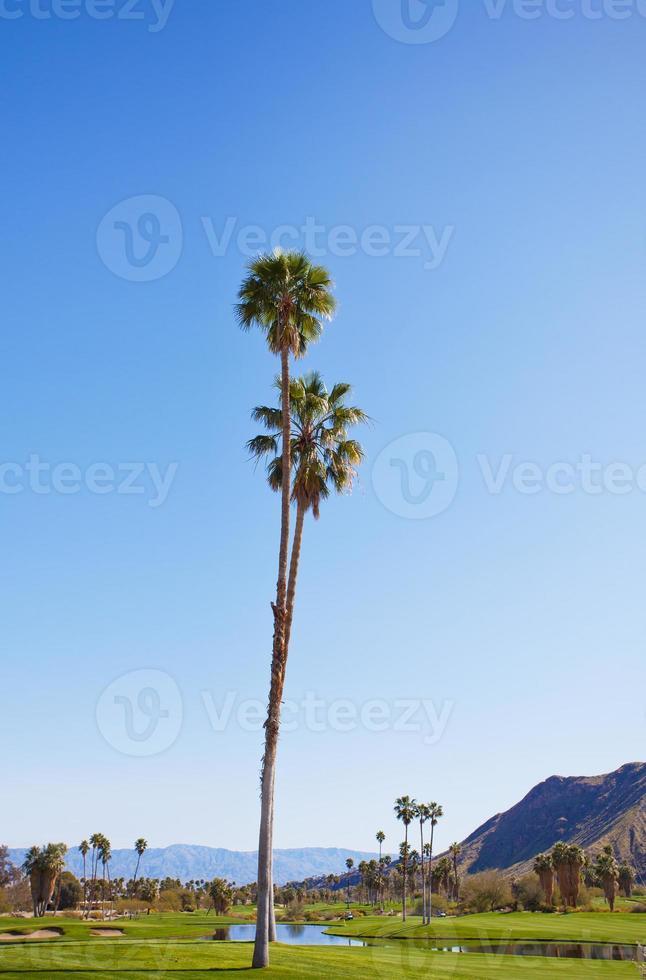 Palm Springs Golf foto