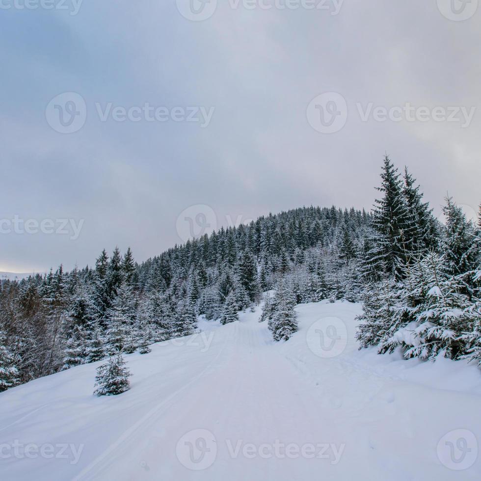 Winterlandschaft foto