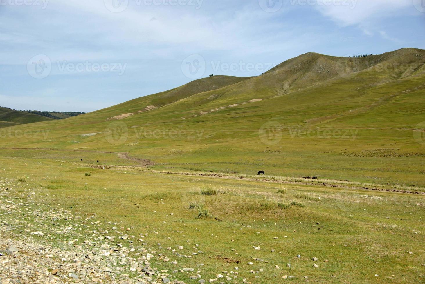 Landschaft in der Mongolei foto
