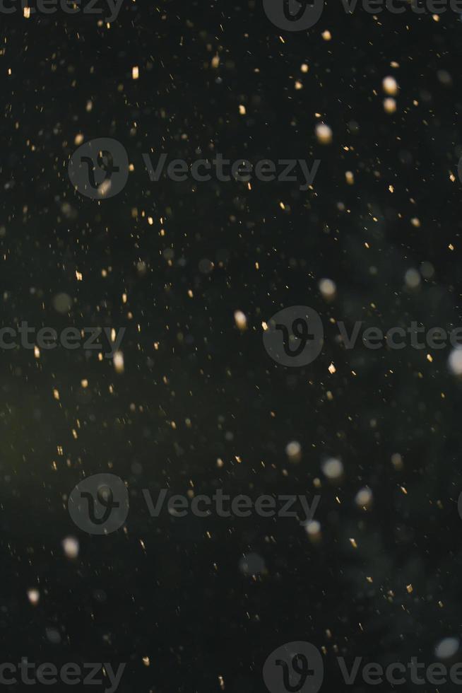 Winter Schneefall foto