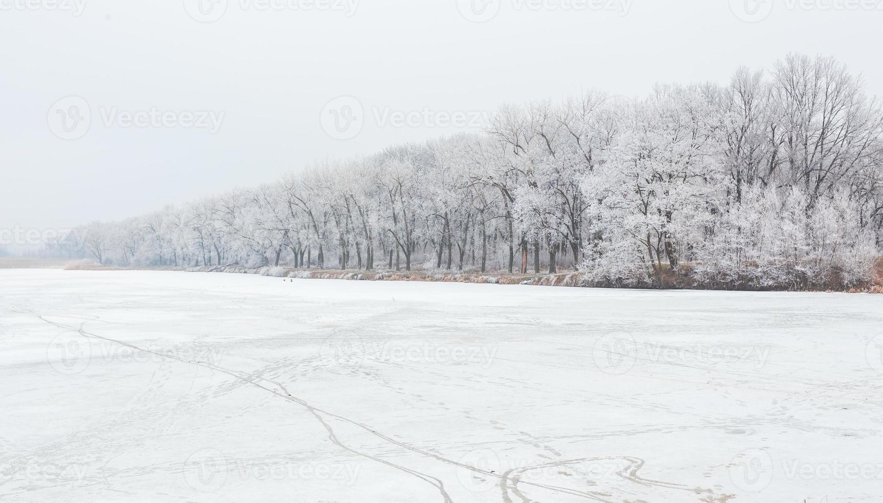 Winterzeit im Waldsee foto