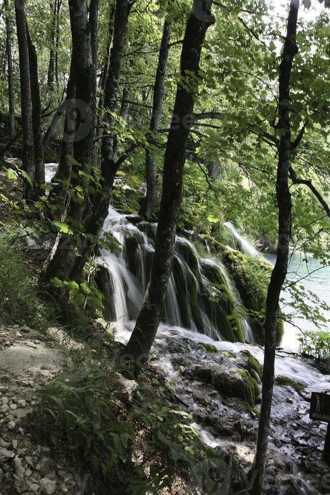 Plitvice Seen, Kroatien foto