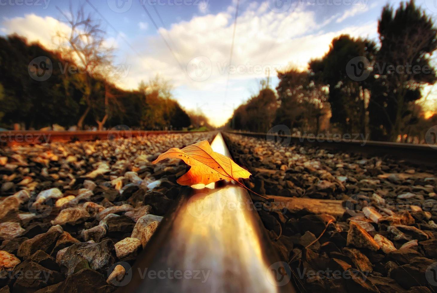 Regen und Herbst foto