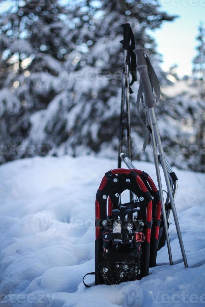 Schneeschuhe in Schneebank foto