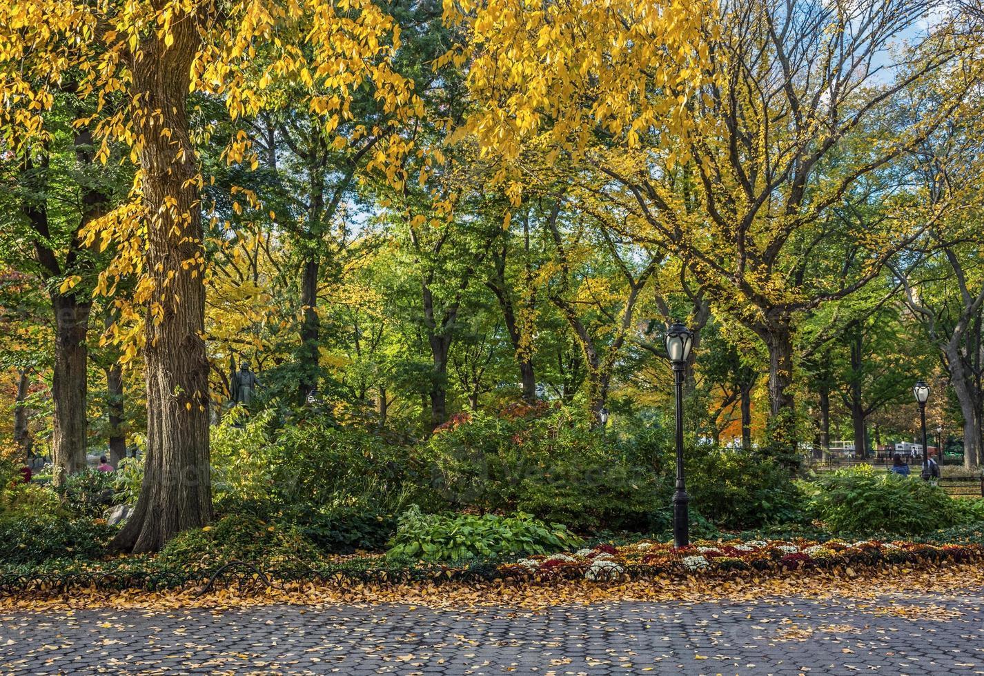 Central Park Farben foto